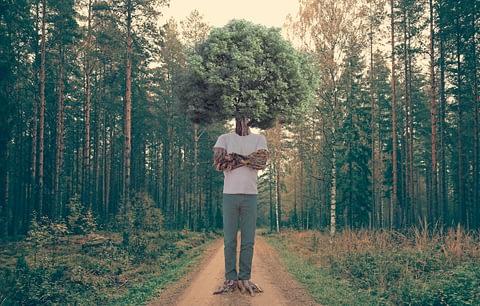 orman kafa doğa çevre duruş fotoğrafçı prodüksiyon tasarım proje kretif creative çekim fotoğraf fotoğrafçı reklam photoshop retouch studyo konsept concept