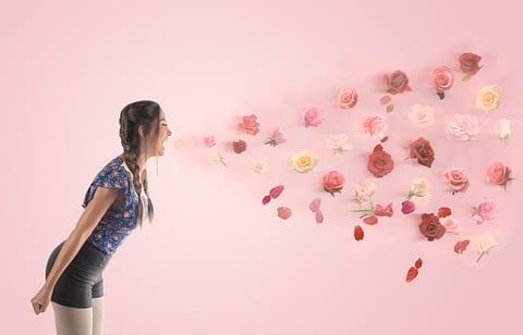 gül bahar pembe pink rose scream fotoğrafçı prodüksiyon tasarım proje kretif creative çekim fotoğraf fotoğrafçı reklam photoshop retouch studyo