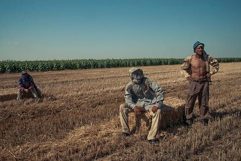 tarım işçi çiftçi trakya dinlenmek saman topla